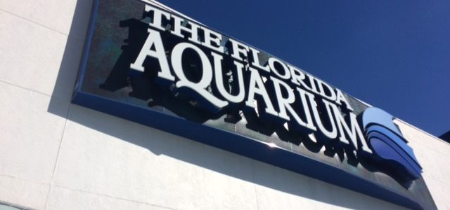 The Florida Aquarium Adventure